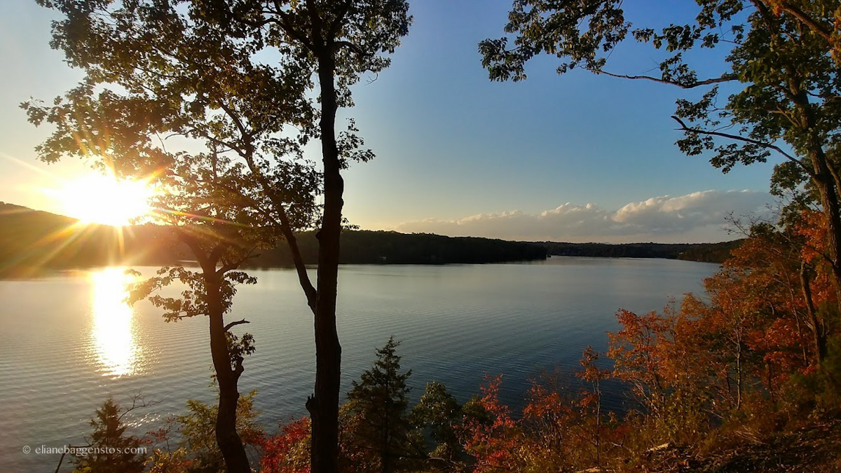 Campsite Review: Claytor Lake State Park, VA
