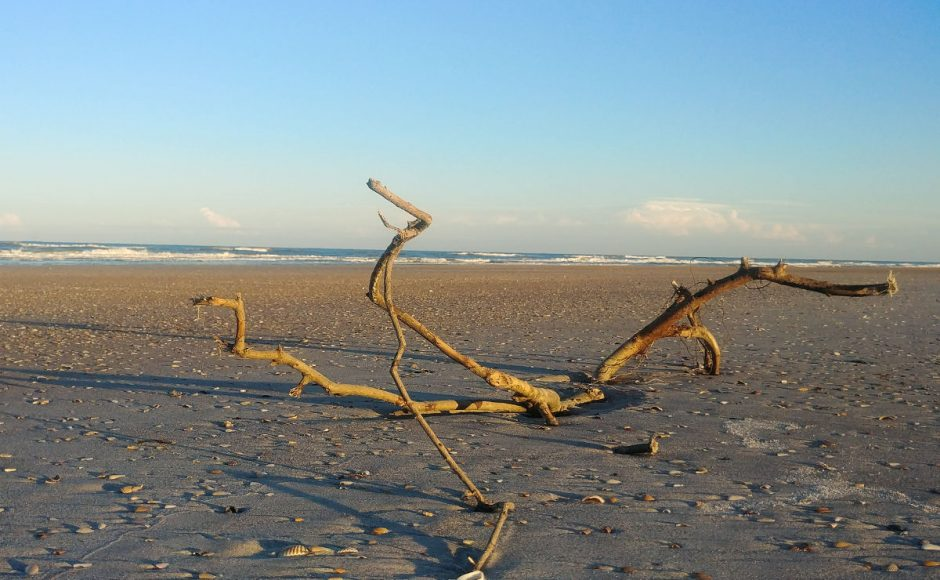 Anastasia State Park – St. Augustine – Beach and Camping