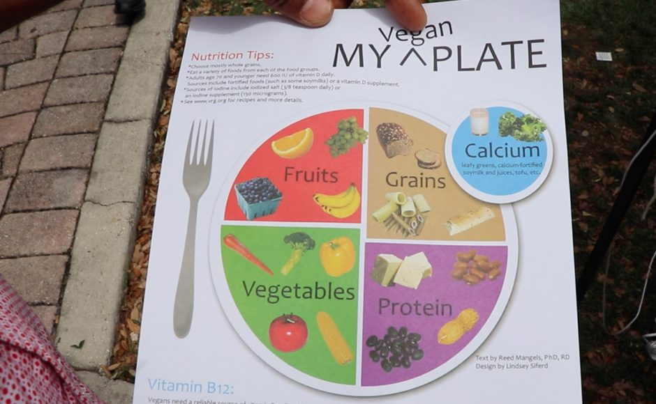 Earth-Day-Orlando-2019-Vegan-Plate